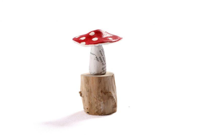 Pilz aus Keramikmasse auf Holz ca. 6cm